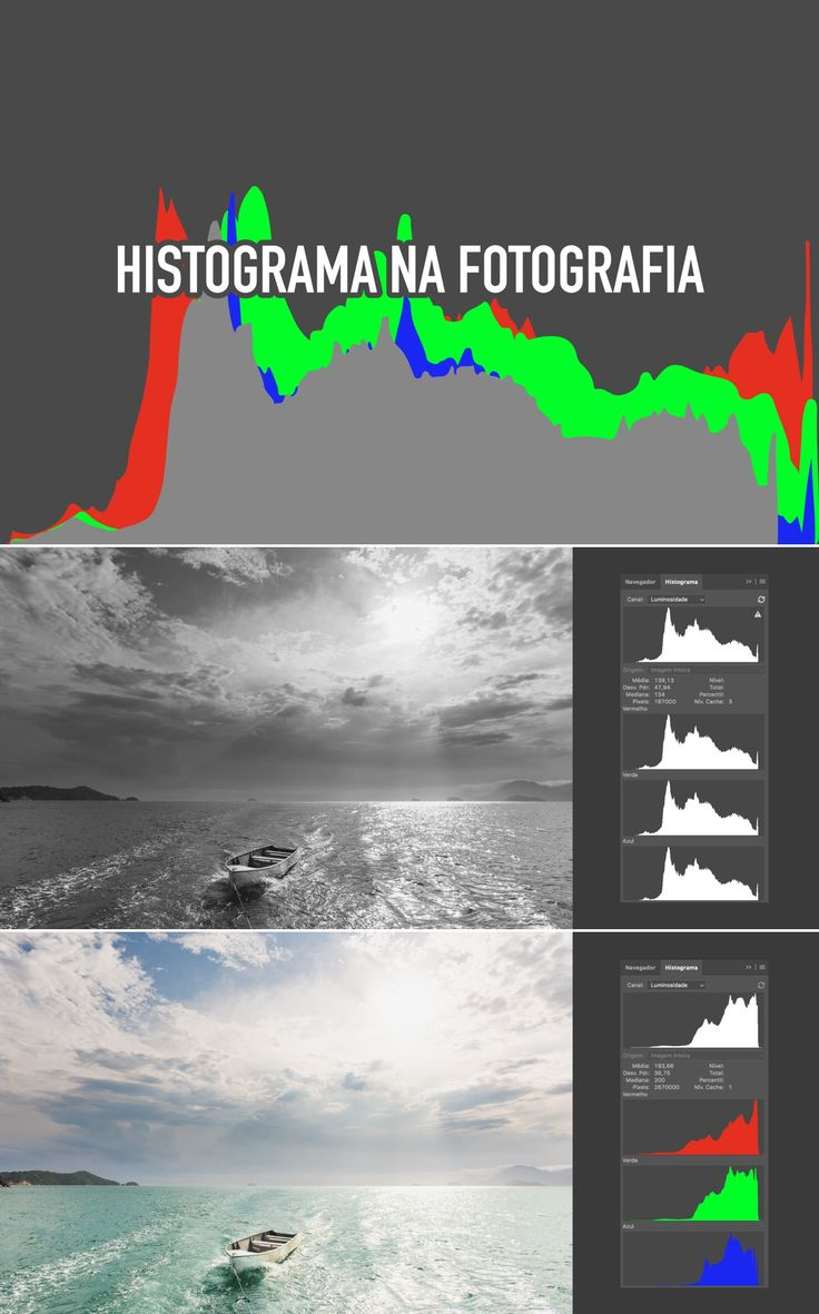 Histograma na Fotografia: O que é e como interpretar