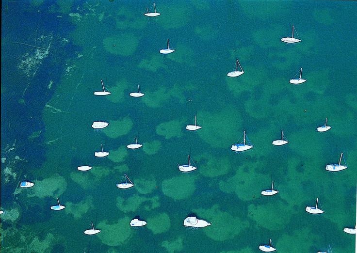 Aerial shot of Lake Macquarie
