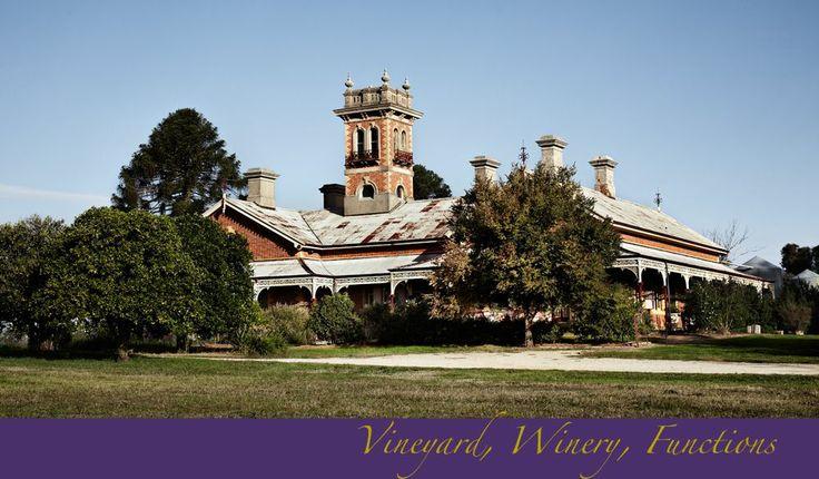 Olive Hills Estate, Rutherglen Victoria