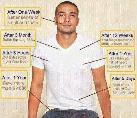 How to quite smoking process essay   frudgereport    web fc  com Mercola Articles   Dr  Mercola
