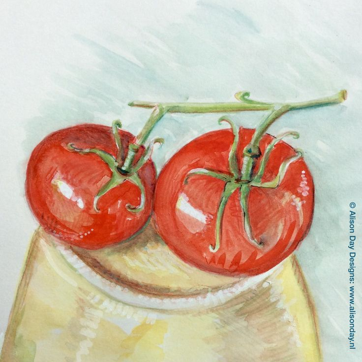 Tomatoes by Alison Day #the100dayproject  Instagram: #100daysoffoodanddrink #food #drink #illustration  Newsletter - for more info and creativity: http://alisonday.us8.list-manage.com/subscribe?u=f0ee923eb109c974f6e7d72c2&id=d783011ad5