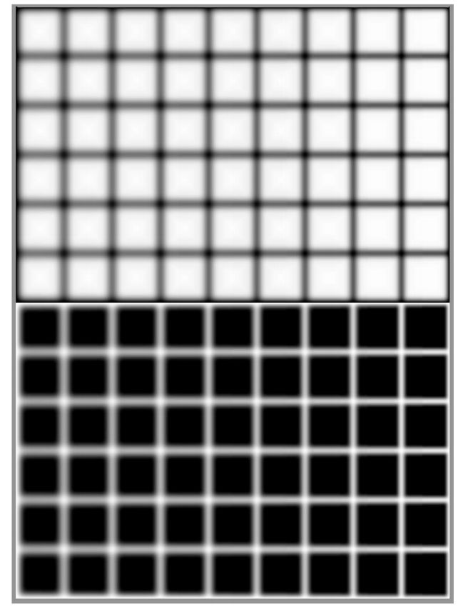 Blurred Hermann grids produce, as found by Bergen (1985), a scintillation effect. (Credit: Perception)