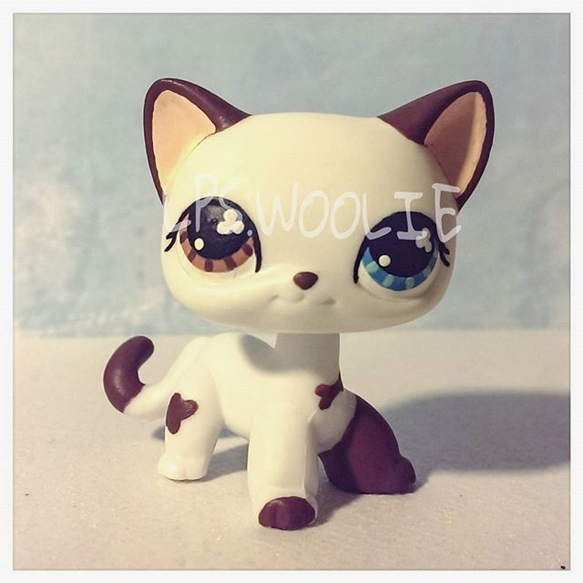 Lps custom Tom Dawson in cat form from SophieGTVs Lps Popular