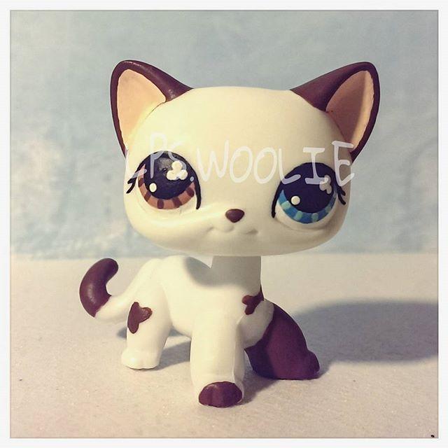 Lps custom Tom Dawson in cat form from SophieGTVs Lps Popular