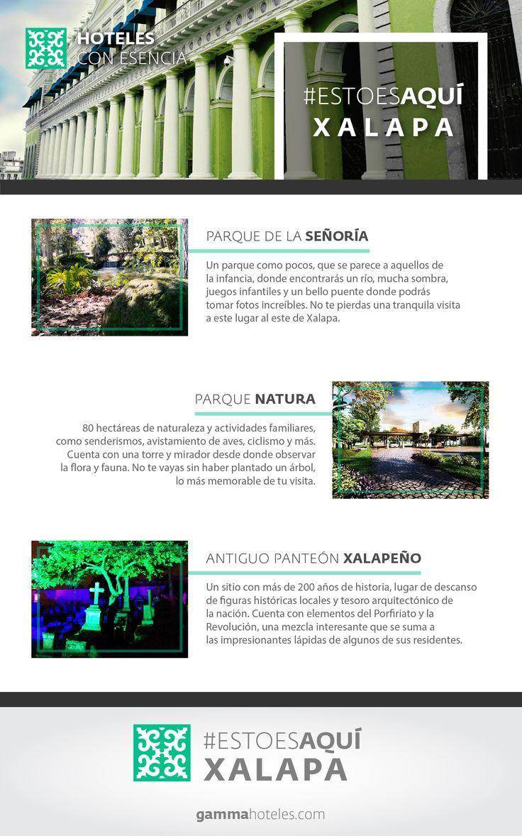 El clima de Xalapa es ideal para explorar, te esperamos. #EstoEsAquí #GammaHoteles #GammaXalapa
