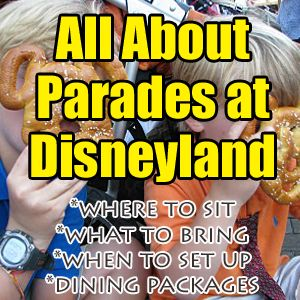 Updated March 5, 2017 ***This post includes the new parade rules put into place early March 2017. ***The following information is for all parades at Disneyland - Paint the Night, Main Street Electrical Parade (MSEP), etc. Parades at Disneyland are some of my favorite experiences in the park. I...