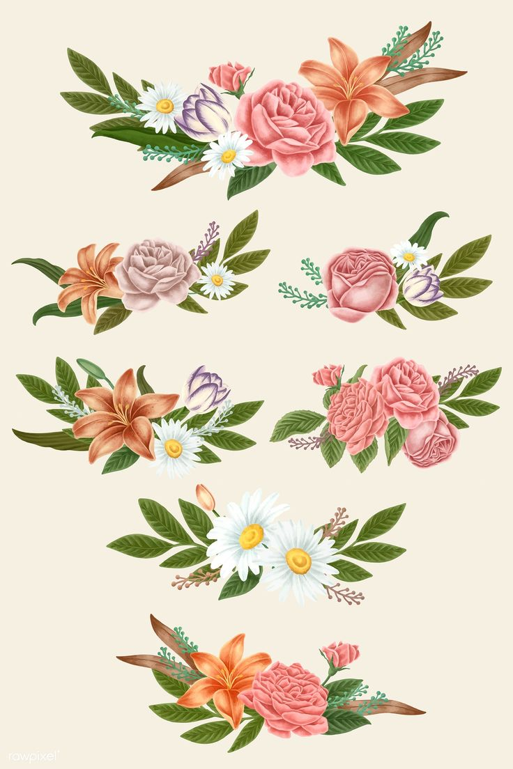 Download premium vector of Vintage flower bouquets vector