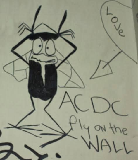 Although prisons create physical barriers between prisoners and the outside world, references to popular culture are frequently observed in the graffiti. A number of the images refer to television shows, movies, or music. Musical artists frequently observed in the graffiti include AC/DC, Sex Pistols, Led Zeppelin, Bob Marley, and Jimi Hendrix.