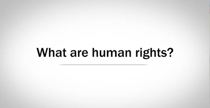 history of the universal declaration of human rights pdf