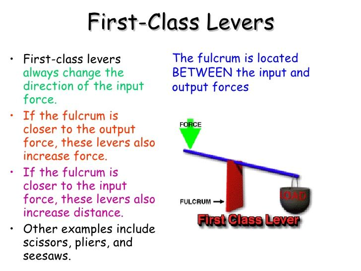 12 Best Levers Images On Pinterest Third Study And 1st Grades