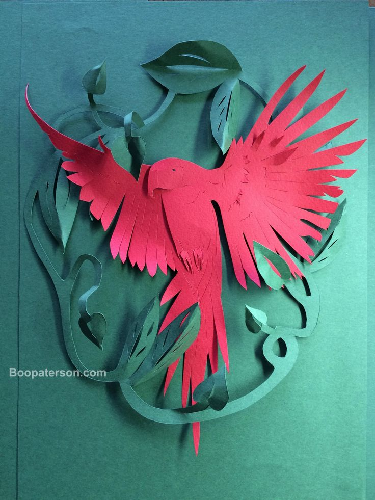 Papercut parrot by Boo Paterson