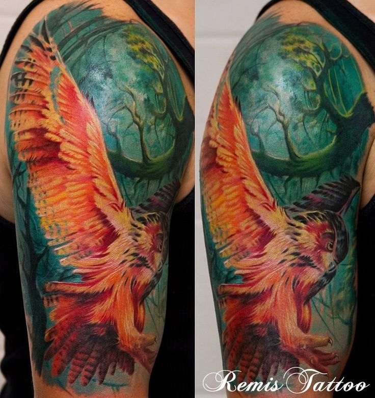 Amazing Color On This Owl Tattoo Sleeve!