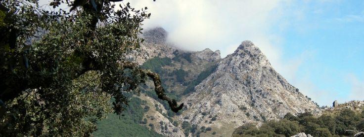 10 Parques Naturales de Andalucía que tienes que visitar.