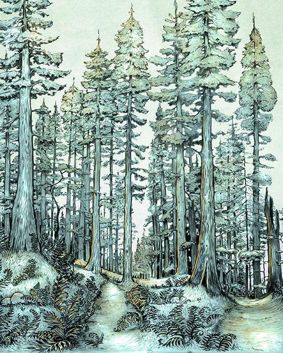 Redwood Forest Art Print - Green Forest WALL Art - Moss - giclée Fantasy Art Print  - - Fairy Tale Art by the Filigree