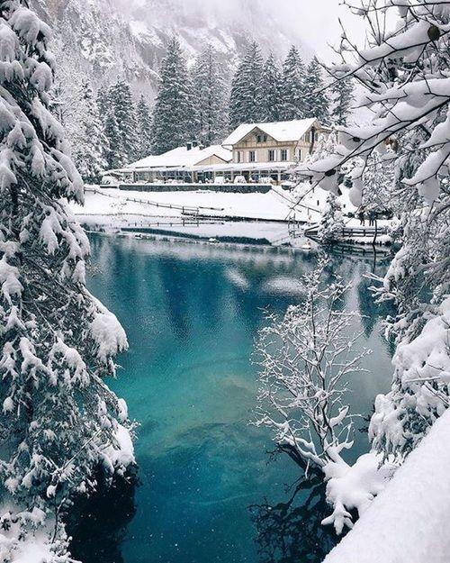 "23639 Best Images About ""Winter Wonderland"" On Pinterest"