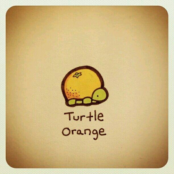 Tortuga naranja