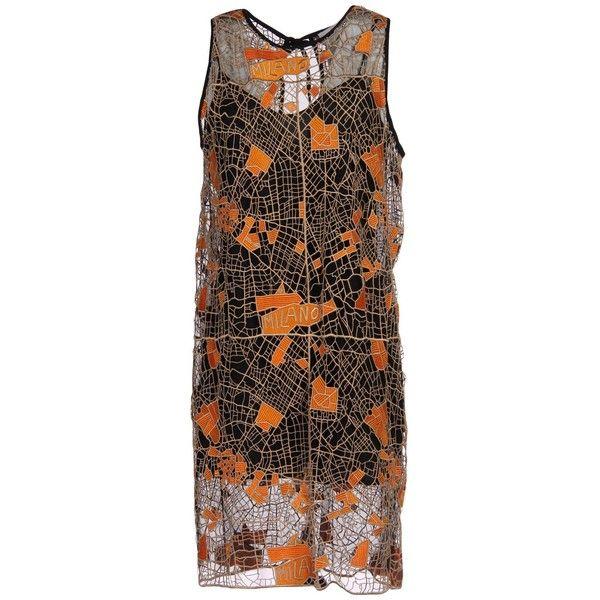 Holly b lace dress shirt