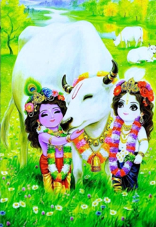 Kanha And Balram With Gau Mata Divine Hindu Deities  E2 98 80 Pinterest Krishna Lord Krishna And Radhe Krishna