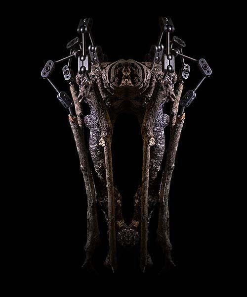Nocturne #39 by Chris Denaro at Brenda May Gallery