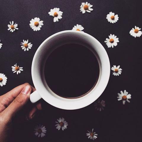Good morning sunshines ☀️. A coffee? ☕️