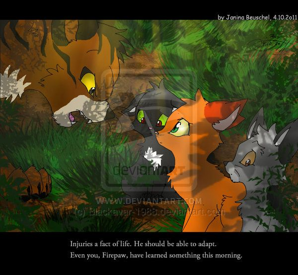 Warriors Erin Hunter Lost Stars: 1000+ Images About JB-pawstep On Pinterest