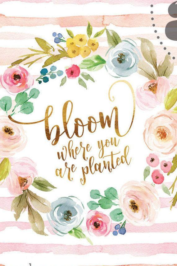 Bloom Where You Are Planted In Fresh Watercolor Wash With Etsy Flower Quotes Bloom Quotes Bloom Where You Are Planted