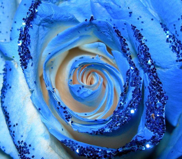 Синий цвет означает свободу.  Я свободна, как капля воды, И свободна...