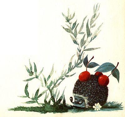 The Curly Hedgehog - cherries