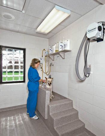 Photo Gallery - Hospital Design-  floor, stairs, tub all one covering.  no seams, no cracks, easy clean up!!!