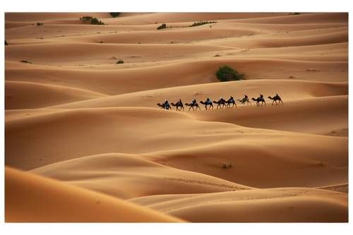 Western Sahara Desert, advised to avoid in the hotter summer months