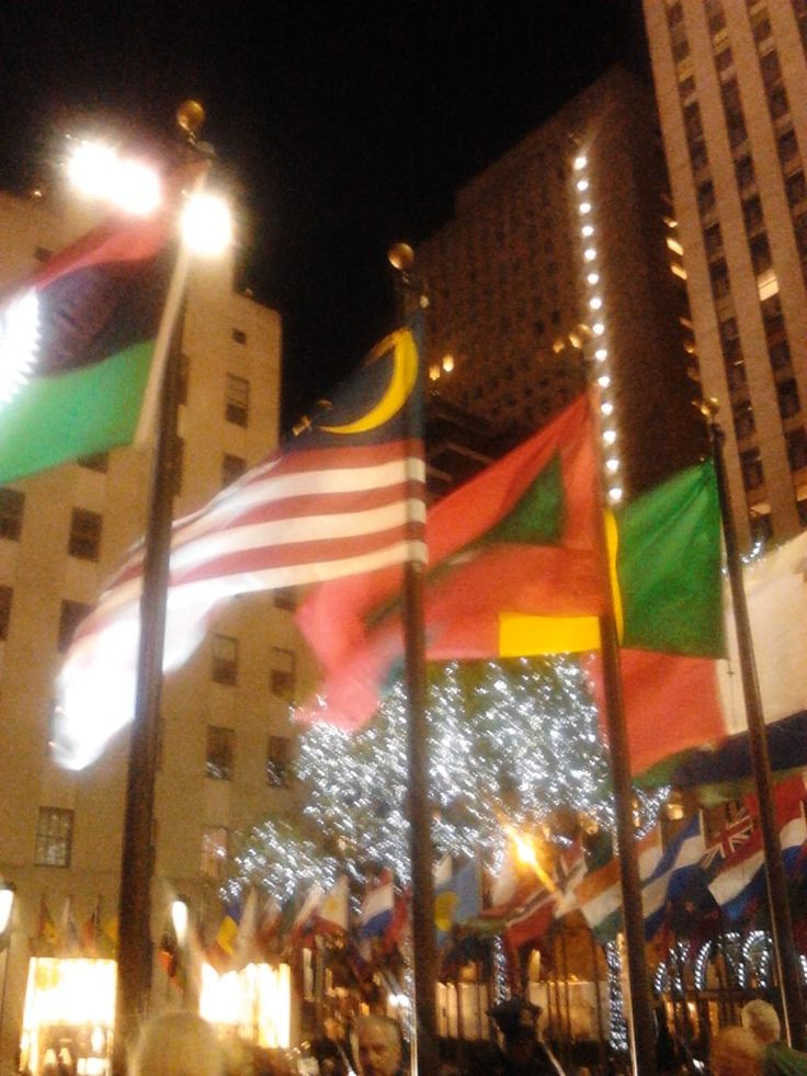 Pinner said: Flags of Islamic Countries Flying High in NYC! | Logan's Warning: I continually state that our freedoms have been turned into a tool of Islam by Muslims and their over tolerant infidel supports. Tonight we will see another example of this. Taking a look at NYC we see that Ground Zero is disgracefully surrounded by halal food carts, the Islamic Prayer of hatred is being broadcast onto the streets,