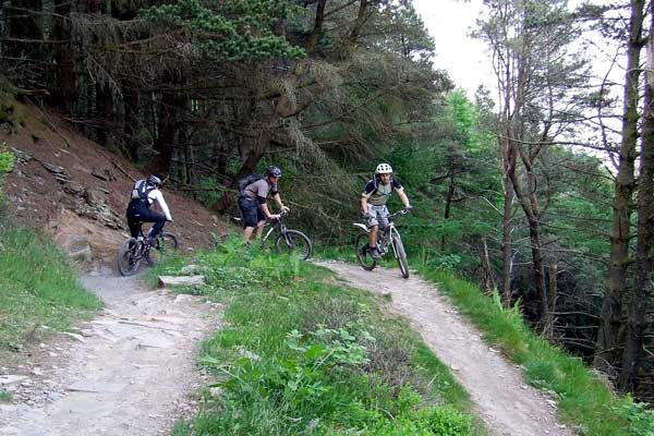 Family fun to double black Mountain Biking / Cycling Trails, including the Cornish Way are close to our luxury Cornwall cottages