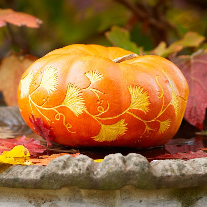 Entwine your pumpkin in carved leaves. Trace the pattern, and then cut away the outer skin using pumpkin-carving tools. Click for the free stencil!
