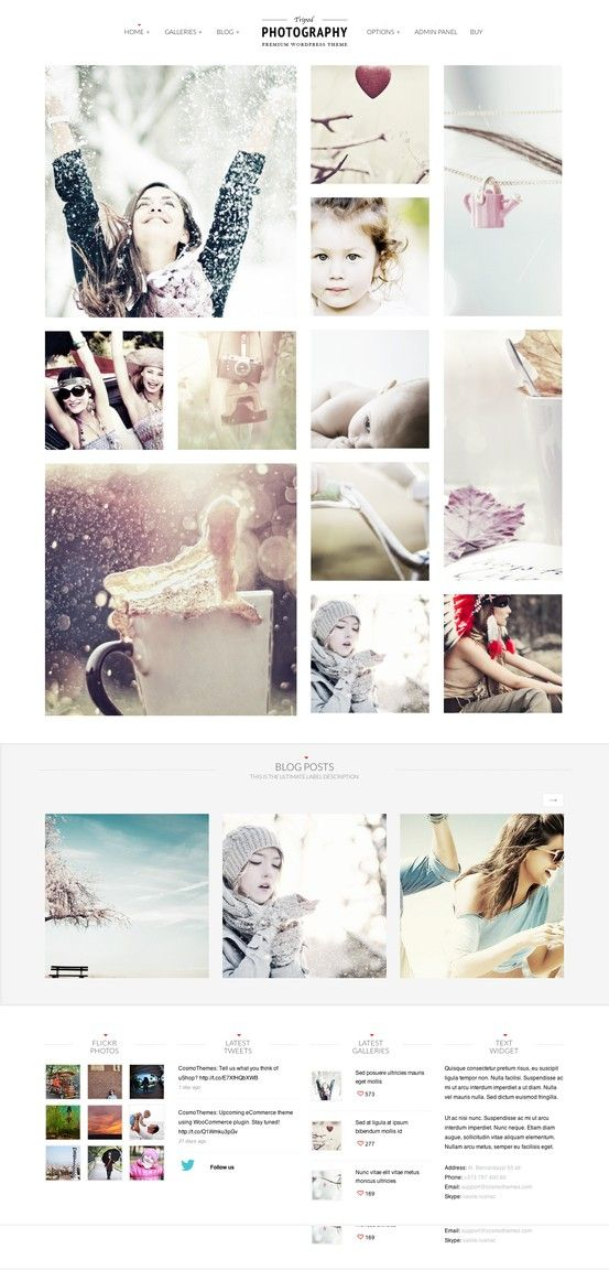 wordpress photography themes - http://themetailors.com/feature/wordpress-photography-themes/