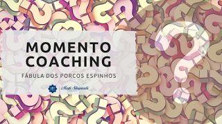 Momento Coaching: A Fábula dos Porcos-espinhos