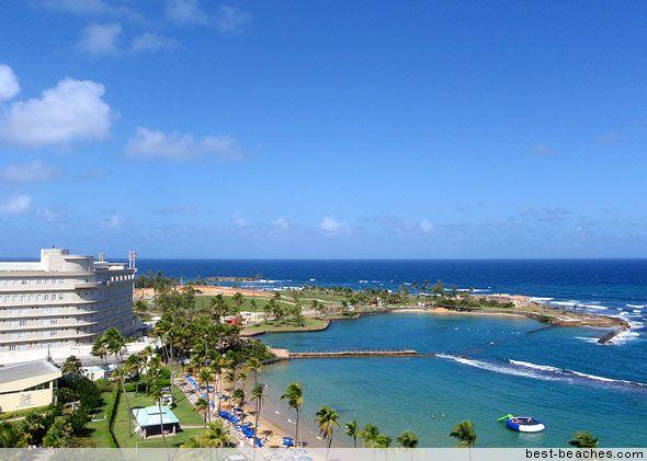 adidas campus lt puerto rico