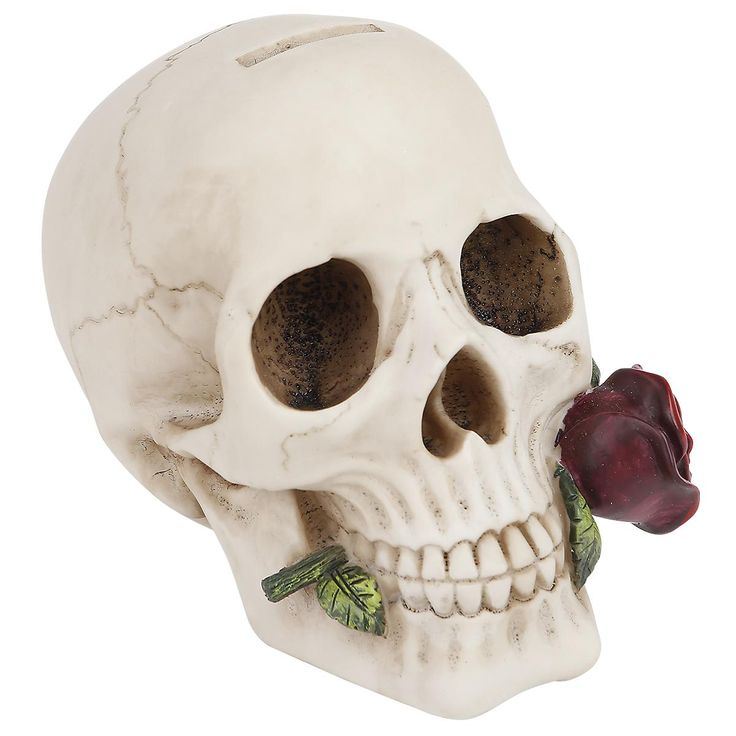 Argentine Skull fra Nemesis Now er en cool sparebøsse til fans af kranier. 14 cm…
