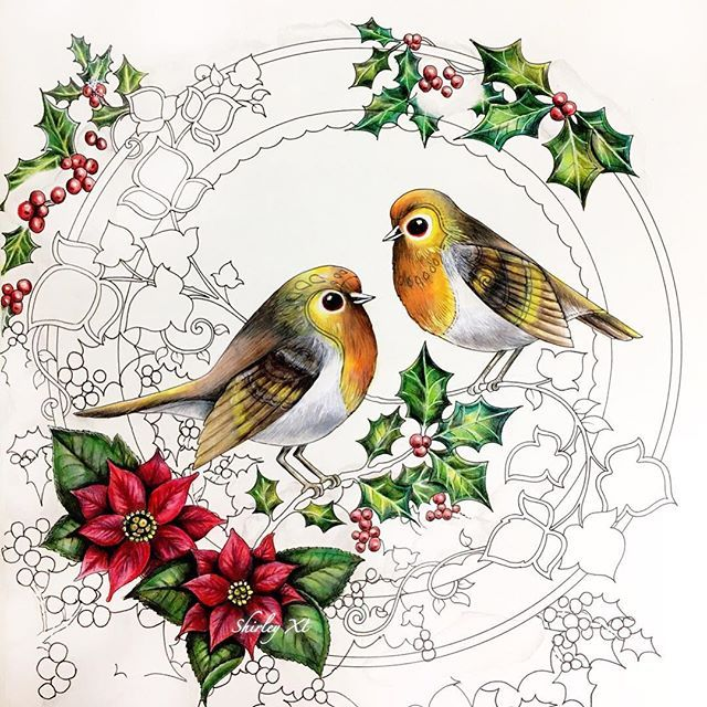 New WIP - Robins and Berries❤️. Coloringbook: Johanna's Christmas Medium: Prismacolor Premier pencils. . #johannaschristmas #johannabasford #coloringbook #coloring #coloriage #colouringforadults #prismacolor #coloredpencils #adultcoloring #shirleytutopia #colouring #colouringbook #coloringtutorial #塗り絵の本 #大人の塗リ絵 #著色本