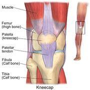 Exercises For Chondromalacia Patella Knee Pain