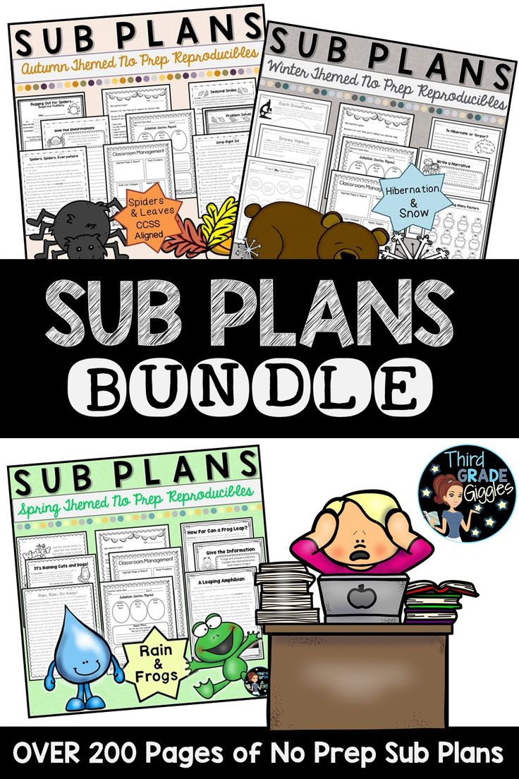 This sub pack bundle includes a substitute organization pack and multi-content area units for each season. Pick and choose what activities you want the substitute to cover each day. Each unit has multiple activities for each content area. Each separate unit can be spread over the course of days!