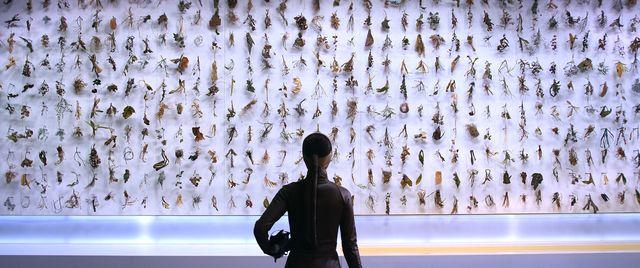 Kyungwon Moon & Joonho Jeon, 'El Fin Del Mundo ,' 2012, Gallery Hyundai