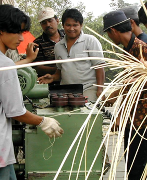 Commercial over-harvesting has already eradicated wild rattan from the forests of western and central Kalimantan. The Rattan Project, an Indonesian non-profit organization based in East Kalimantan, helps local farmers to develop sustainable, cultivated supplies of rattan. The group also helps Dayak cooperatives to create new products based on traditional designs, and to reach markets outside their home areas. Threads of Life buys rattan products only from groups that develop renewable…