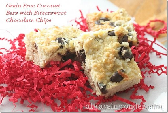 Grain Free Coconut Bars with Bittersweet Chocolate ChipsCoconut Bar