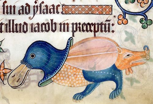 hog-assed and snout-ringed duck  Luttrell Psalter, England ca. 1325-1340.  British Library, Add 42130, fol. 186r