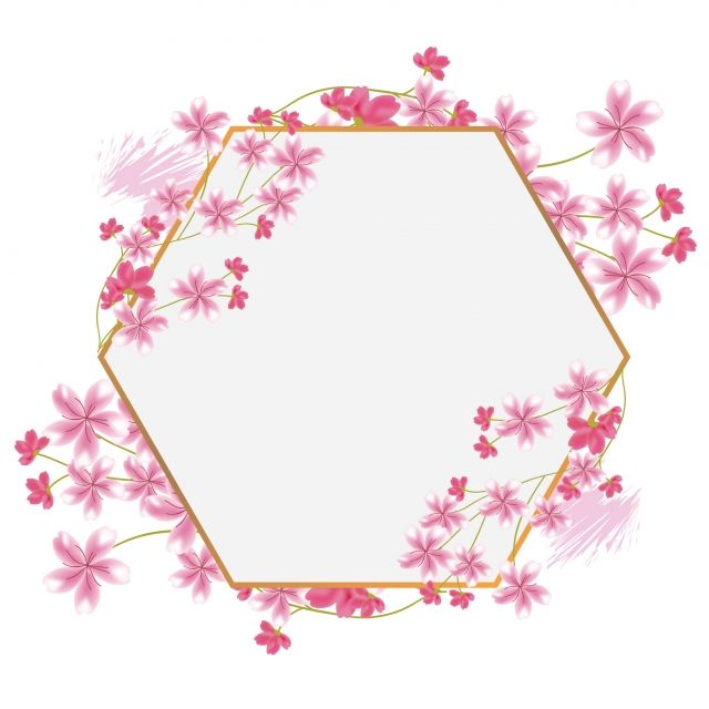 Sakura Cherry Blossom Flower Hexagon Frame Border Design Frame Sakura Png And Vector With Transparent Background For Free Download Flower Drawing Cherry Blossom Drawing Cherry Blossom Vector