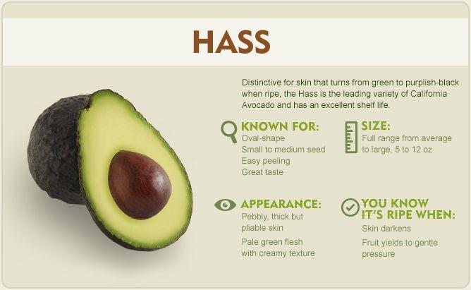 The year-round avocado