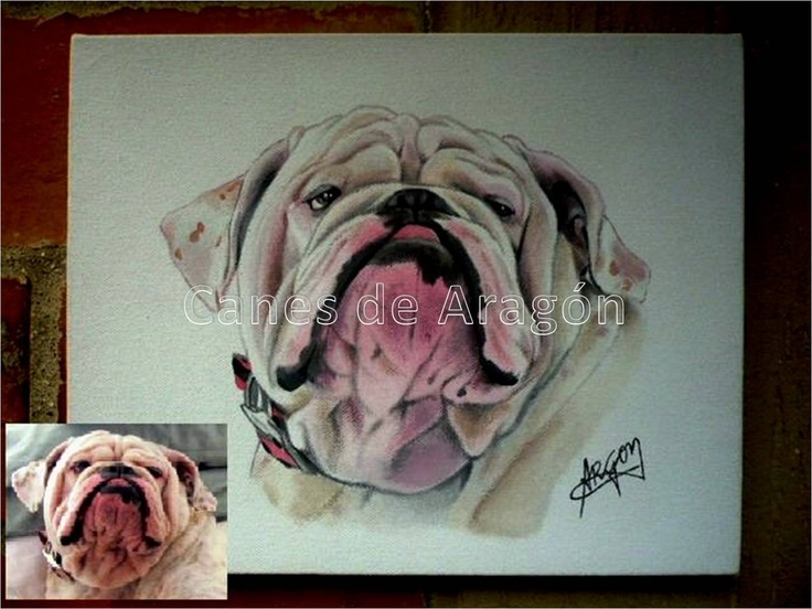 Retrato Bulldog (PLINIO). Autor: Alexander Restrepo González. Medellín-Colombia. Pinturas de mascotas por encargo.