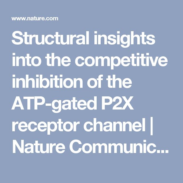 Structural insights into the competitive inhibition of the ATP-gated P2X receptor channel   Nature Communications