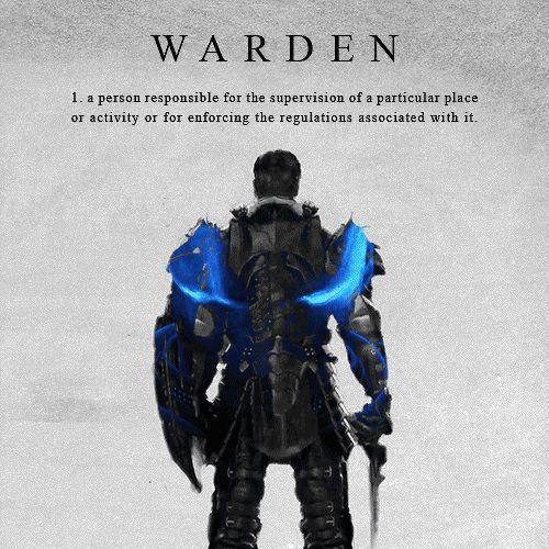 The Warden - Dragon Age: Origins