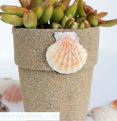 Take beach sand and cover a terracotta pot... and other creative ideas for these pots: http://www.completely-coastal.com/2013/07/terra-cotta-pot-crafts.html